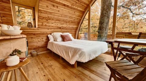 Foto de una suite interior de madera con una cama de matrimonio