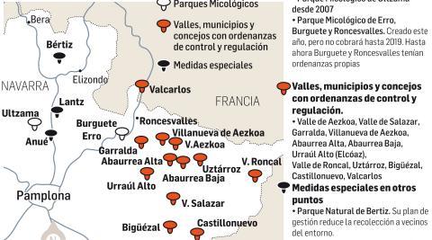 Ordenanza sobre las setas en Navarra