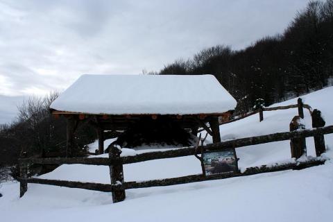 Imágenes de este fin de semana en Roncesvalles y en el valle de Aezkoa.