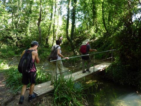 Imágenes del paseo por el Sendero Local NA–142–Aserradero de Ecay.