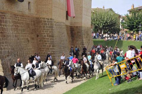 Fotos de la feria del caballo de Marcilla
