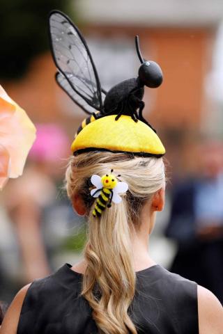 Fotos de los tocados y chisteras en las carreras de Ascot