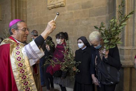 Galería de fotos de la celebración del Domingo de Ramos en la Catedral de Pamplona.