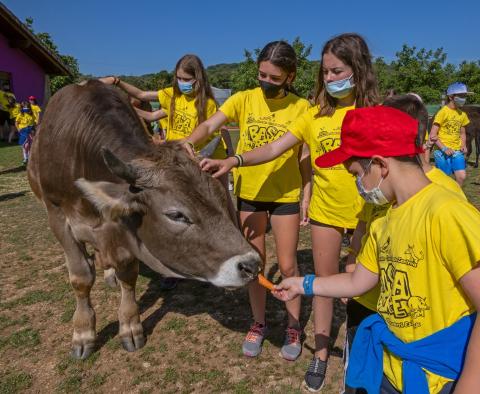 Campamento de verano en la granja Basabere