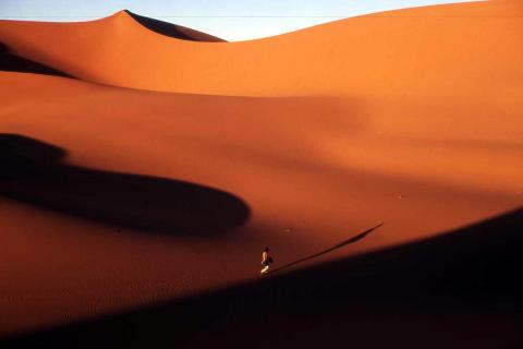 Desierto de Argelia. Una persona de origen subsahariano camina en busca de la costa de Marruecos
