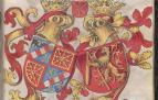 Galería de imágenes con escudos de algunas de las principales casas nobiliarias navarras