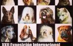 Refena acoge este domingo una exposición canina