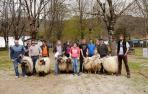 La Feria de Primavera calibra en Elizondo el estado del ganado