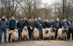 'Baztan zopak' y carneros por primavera