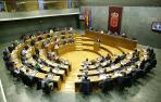 Pleno del Parlamento dedicado a la Economía Social_7