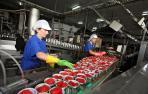 El veto comercial ruso inquieta en el sector agroalimentario navarro