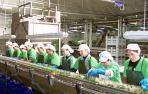 Nuevo récord de exportación de la agroindustria en Navarra: 1.086 millones en 2017