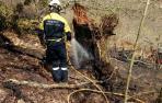 Un incendio quema 14 hectáreas, cuatro de arbolado, entre Elbete y Arizkun