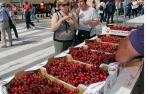 Fotos de la XIX Fiesta de la Cereza de Milagro