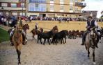 Feria del caballo de Marcilla