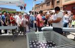Fotos de la XX Fiesta de la Cereza de Milagro