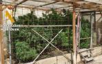 La Guardia Civil se incauta de sustancias estupefacientes en Milagro y Estella