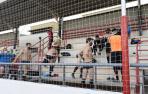 NA+ pide información sobre el retraso en la reforma del campo de fútbol de Cortes