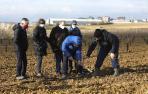 Plantación de manzanos en la finca de prácticas de la UPNA