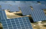 Placas solares de un parque fotovoltaico.