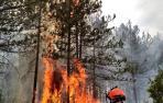 Importante incendio en un pinar de Javerri moviliza a varios efectivos de bomberos y medios aéreos