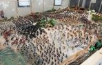 Recreación de Las Navas de Tolosa con 4.000 clicks en la Casa de Juventudde Tudela.