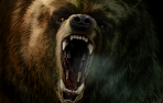 Cartel de la exposición 'Spelaeu's, dedicada a los osos de las cavernas (ursus spelaeus).