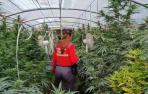 policía foral marihuana