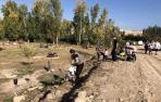 Los voluntarios trabajan en distintas zonas del parque Erasmus de Corella plantando árboles y adecentando el talud del Paretón