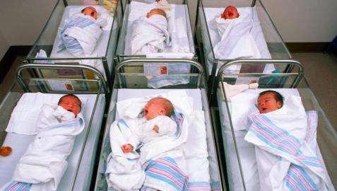 Bebés recién nacidos en sus cunas