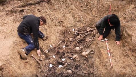 Restos del mendaviés Francisco Lecea en la fosa de Olave