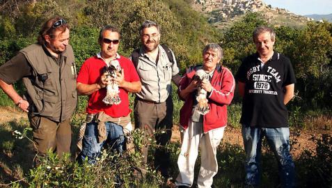 Gallipienzo, lugar elegido para intentar recuperar el águila azor perdicera