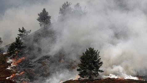 Extinguidos nueve de los diez incendios declarados en las últimas horas en Navarra