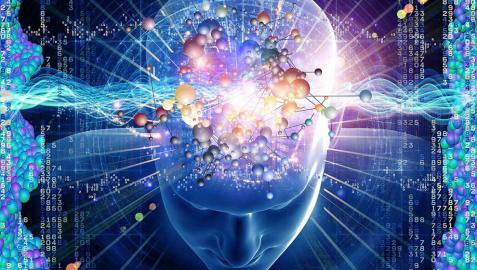 Viajar, un 'combustible' para el cerebro