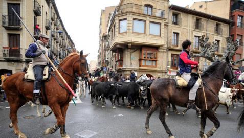 La transhumancia hizo un recorrido de siete kilómetros y llegó a la plaza de toros de Tafalla alrededor de las doce y veinte.