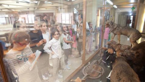 El público podrá visitar por primera vez el Museo de Ciencias Naturales de la UN