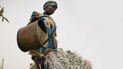 La FNMC cofinancia un proyecto de Cruz Roja en Burkina Faso