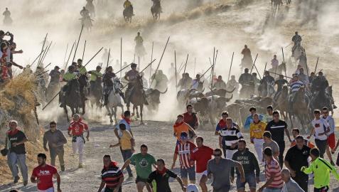 Los encierros de Cuéllar, reconocidos como Fiesta de Interés Turístico Internacional