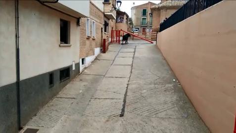 Un toro rompe el vallado y cornea a una mujer en Milagro (CON VÍDEO)