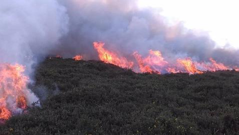 Imagen del incendio que ha afectado a la vegetación junto a la ermita de San Isidro del Pinar.