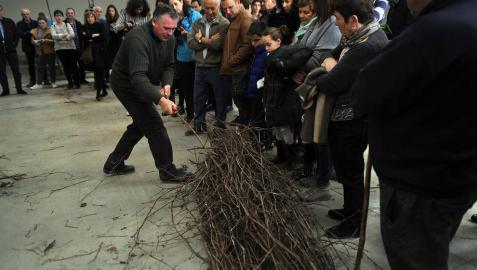 La I Fiesta del injerto llegó a Berbinzana con demostraciones del ayer y el hoy del injerto, una práctica sin la que no se entendería a la cultura de la vid y el vino en Navarra