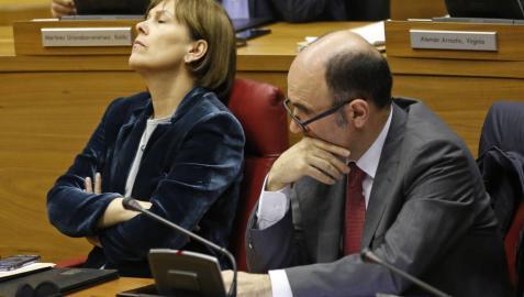 El Consejo de Navarra cree que la ley de violencia policial puede ser ilegal