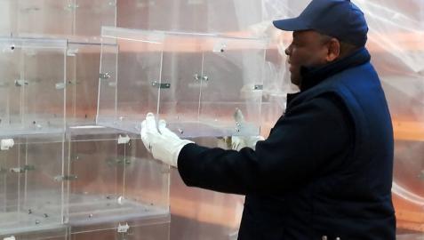 Un equipo de seis trabajadores prepara el material para las elecciones en Pamplona