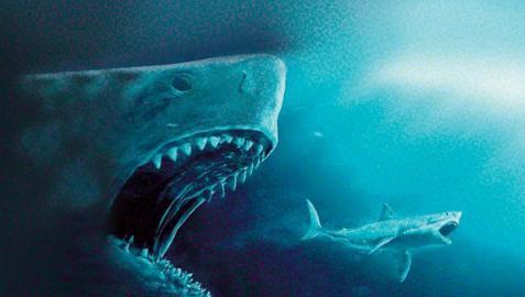 Los dientes terribles del megalodón tardaron millones de años en evolucionar
