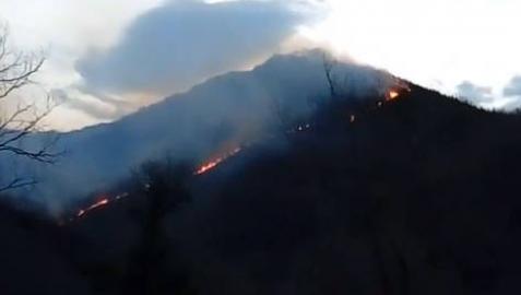 Navarra pide medios aéreos de refuerzo contra un incendio en Goizueta