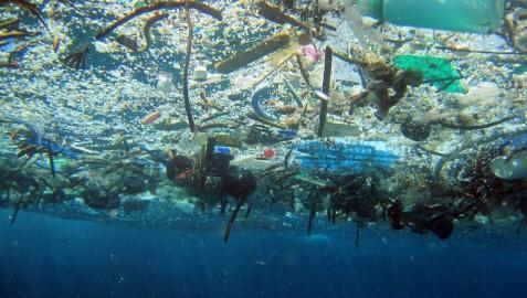Una carrera contra los plásticos que dañan los océanos