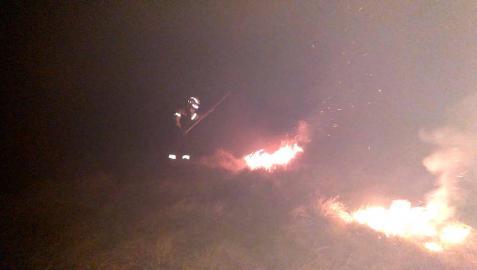 Bomberos Forestales extinguiendo un incendio forestal en Arantza