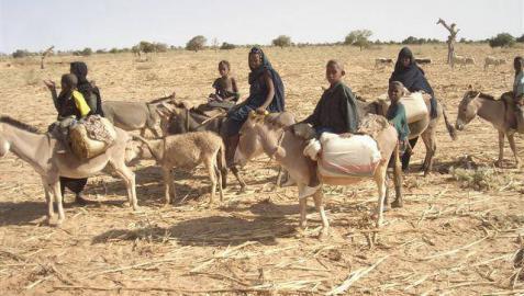 Cerca de 50 civiles muertos por un ataque de milicianos en el centro de Mali