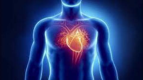 El primer trasplante de corazón realizado con éxito en el mundo cumple 50 años