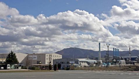 Declarada inversión de interés foral la ampliación de la factoría de Viscofán en Cáseda